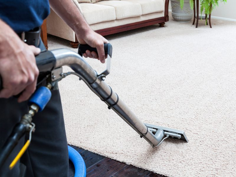 Professional-Carpet-Cleaning-Company-Cleaning-Services
