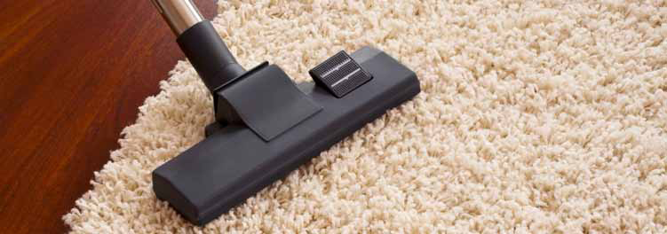 Importance Of Vacuuming Carpet
